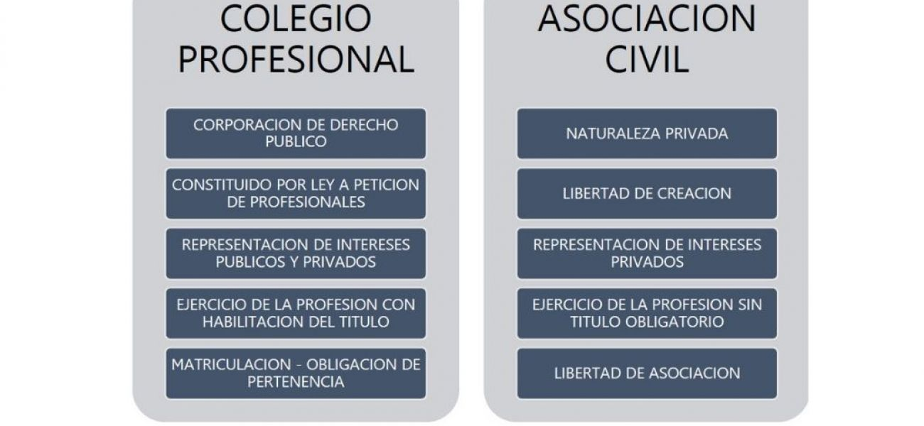 COLEGIO PROFESIONAL vs. ASOCIACION CIVIL